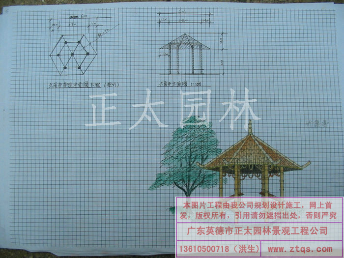 陈国姬手绘图-塑多种凉亭效果(3图) - 承接园林工程