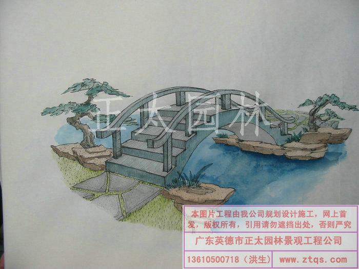 陈国姬手绘图-塑松树皮桥